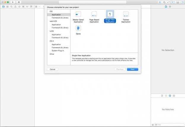 This method is called Sideloading with Xcode and iOS App Signer