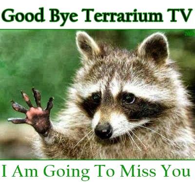 Terrarium TV: The Best Movie & TV Shows App Has Shutdown